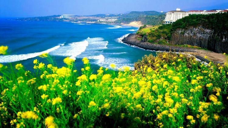 Tour du lịch đảo Jeju Hàn Quốc  2019 - 7N6Đ KH Hàng tháng