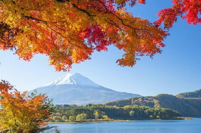 Du lịch Nhật Bản 2019 mới nhất 6N5Đ KH: 28/01, 12/02, 10/03, 10/04
