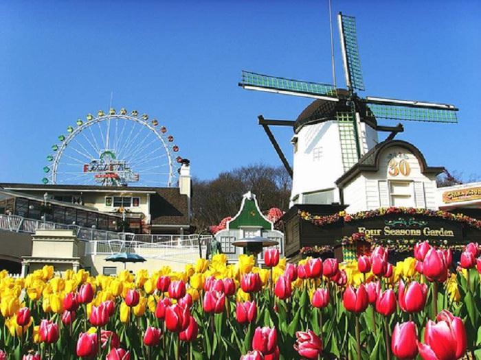 Du lịch Hàn Quốc 4N3Đ: Seoul- Everland- Trượt tuyết Yangji Pine 4N3Đ KH: Hàng Tuần