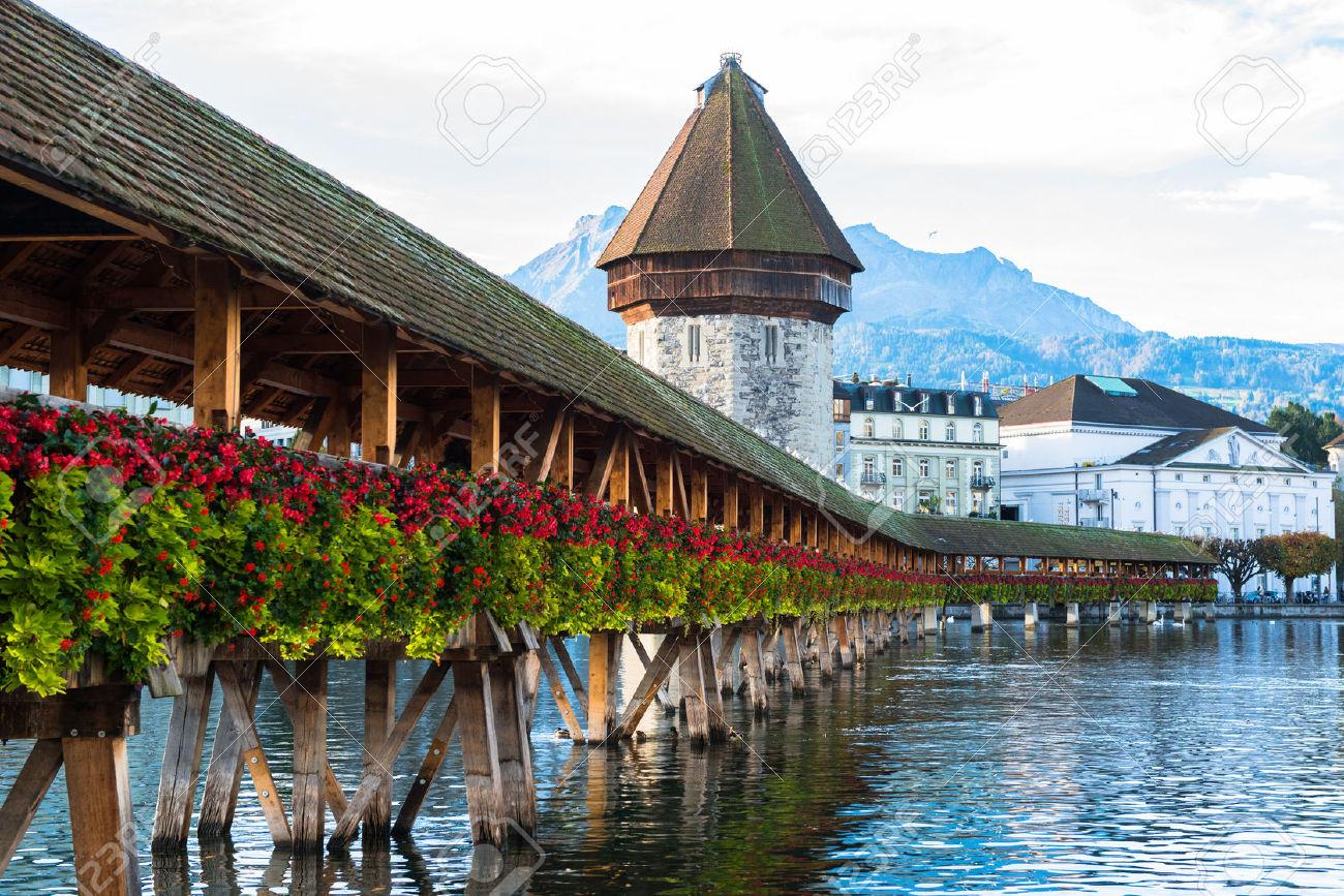 Lucerne hoang dã và lãng mạn