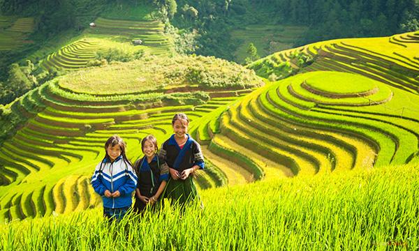 Tour du lịch Sapa 3 ngày 4 đêm bằng tàu hỏa từ Hà Nội