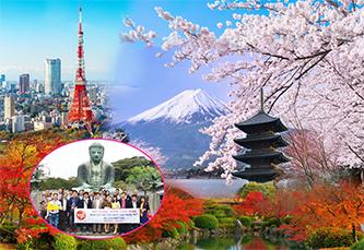 Du Lịch Nhật Bản 2018 Ngắm Hoa Anh Đào và Lễ Hội Samurai:HÀ NỘI – TOKYO – NÚI PHÚ SỸ - FUEFUKI – HÀ NỘI 5N4Đ