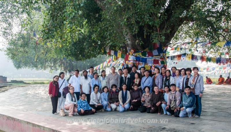 Đoàn khách bên gốc cây Bồ Đề vườn Lâm Tỳ Ni