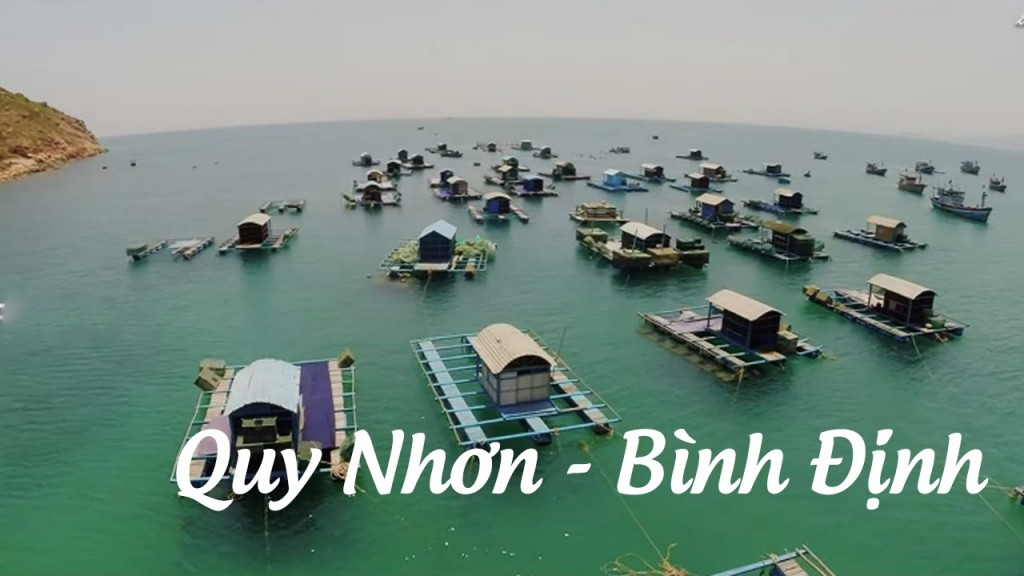 Du Lịch Quy Nhơn 2019: Tây Sơn - Tháp Đôi - KDL Ghềnh Ráng Trượt Cát - Ngắm Lặn San Hô