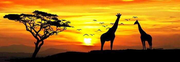 Chương Trình Tour Kenya: Thiên đường hoang dã Châu Phi 8N7Đ. KH 28/9, 8/11