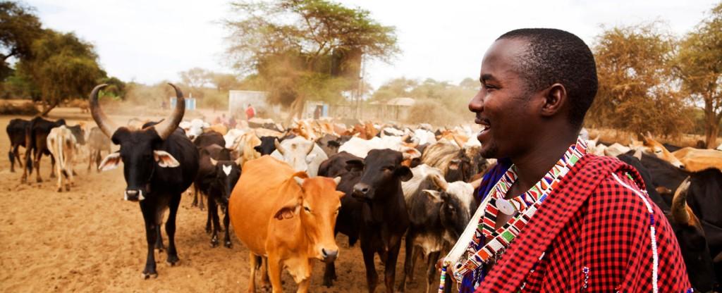 Châu Phi Hoang Dã 2018: Kenya – Tanzania – Zambia – Zimbabwe 14N10Đ. KH: 22/06, 07/07, 28/08