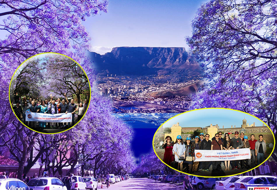 Du Lịch Nam Phi: Johannesburg-Pretoria - Sun City–Capetown 8N7Đ. KH:  23.10.2019