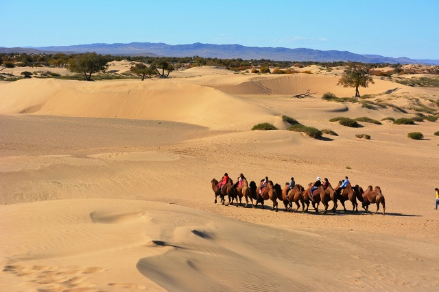 bayan-gobi-elsen-tasarkhai-sand-dunes