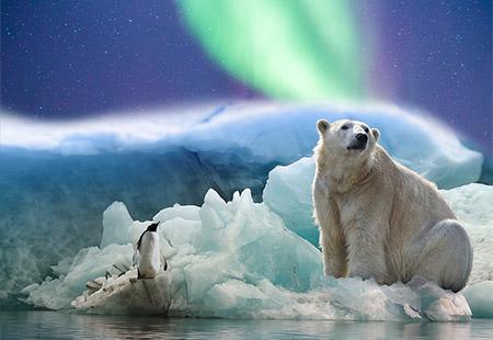 Du Lịch đặc biệt khám phá bắc cực: OSLO - FLAM - BERGEN – TROMSO - SVALB   13N 10Đ   Thời gian dự kiến: 16/3 - 26/3/2019