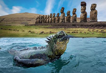 Chương trình đặc biệt 2020: Khám phá vẻ đẹp của đất nước Mỹ La Tinh: ECUADOR - COLOMBIA- BOLIVIA- CHILE  quần đảo GALAPAGOS –  đảo Phục Sinh    Kh: 11/09/2020