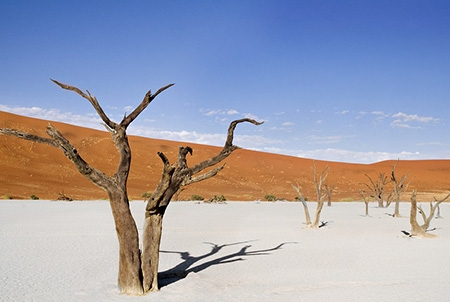 """KHÁM PHÁ VÙNG ĐẤT """"NGOÀI HÀNH TINH"""" BOTSWANA - NAMIBIA TG 13N10Đ NKH 10/05 & 20/09/2020"""